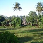 Paysage de côte Est à Madagascar