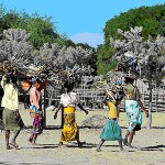 Cap au Sud et sud est de Madagascar